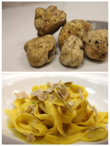 ItalianWhiteTruffle3